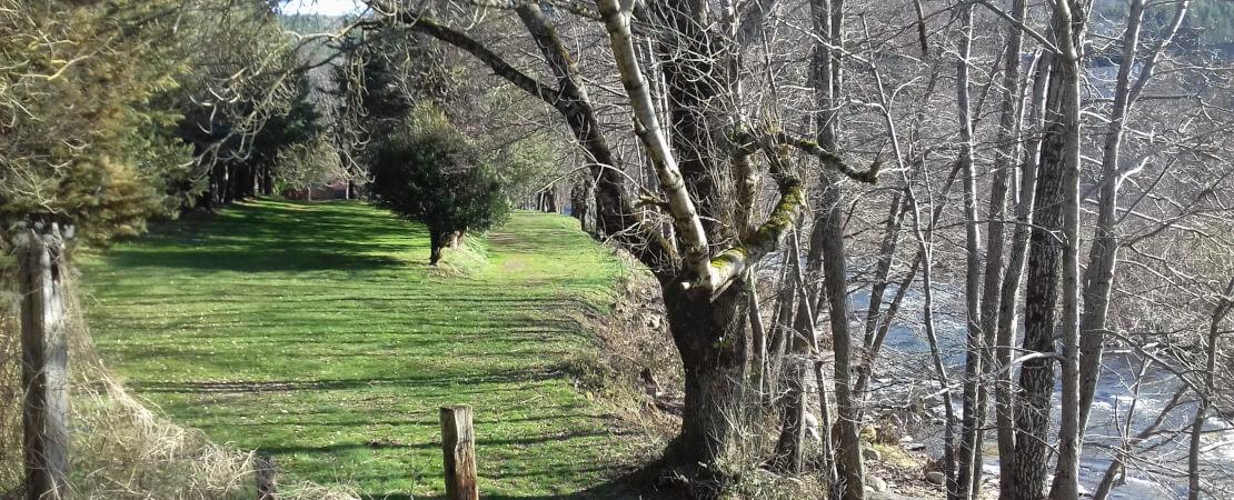 Camping nature, calme et familial en bordure du Tarn