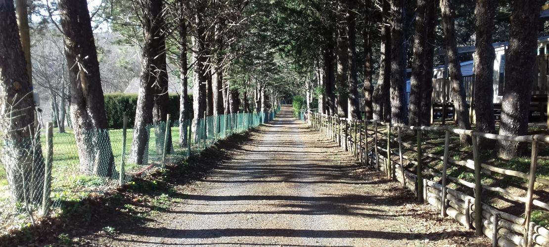 Chemin de Stevenson op de camping