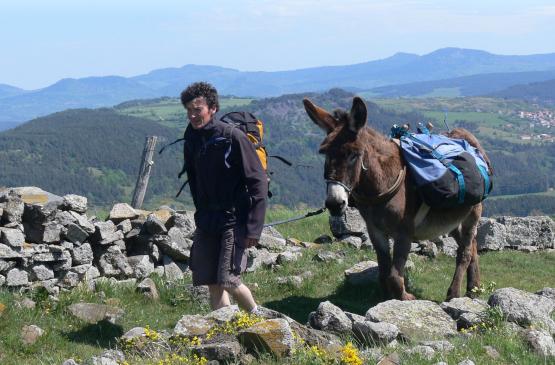 Wandelaar met zijn ezel